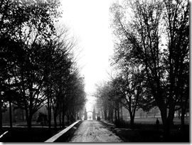 Trinity Park, looking south to gate on Queen 9 Oct. 1913