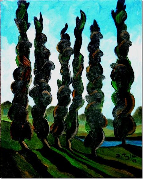 51.  8x10  1998 Eglinton Flats, poplars