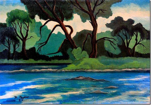 52.  11x14  1989  Humer River