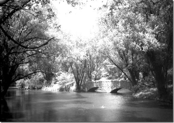 Riverdale Par, Zoo, 1952--pictures-r-1235[1]