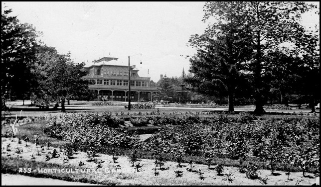 June 6, 1895 from Rose Garden . f1548_s0393_it0253[1]